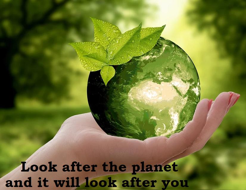 Ecological_News_Logistics_Globalia_feature
