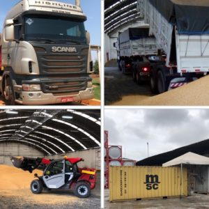 Globalia member in Brazilian cities Itajai & Sao Paulo successfully transports 8,000 tons of organic corn