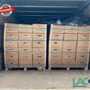 Globalia Sao Paulo/Itajai obtains a contract for the weekly air shipment of perishable cargo